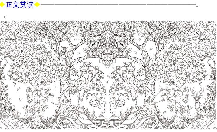 魔法森林 秘密花园第二部减压填色涂鸦书籍图片